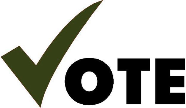2018 President-Elect Voting